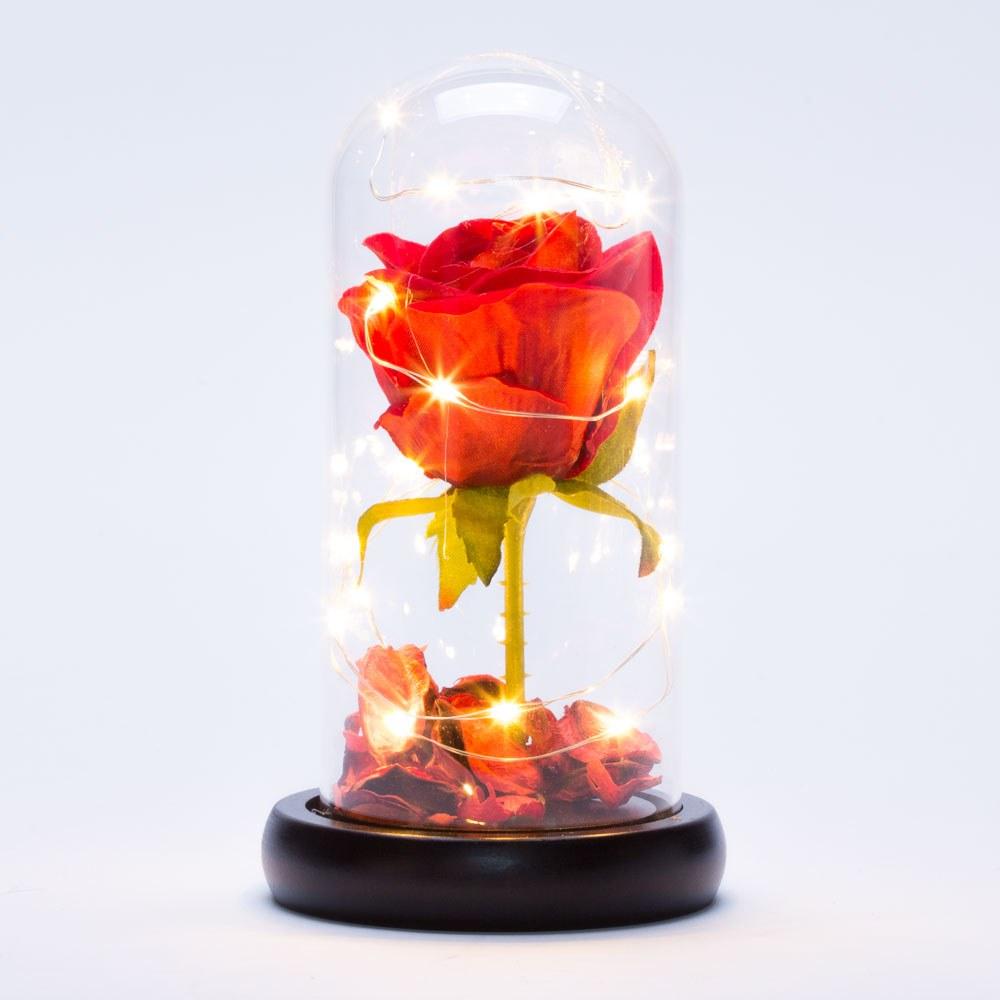 פרח ורד אדום היפה והחיה בתוך זכוכית עם אור 18 סמ